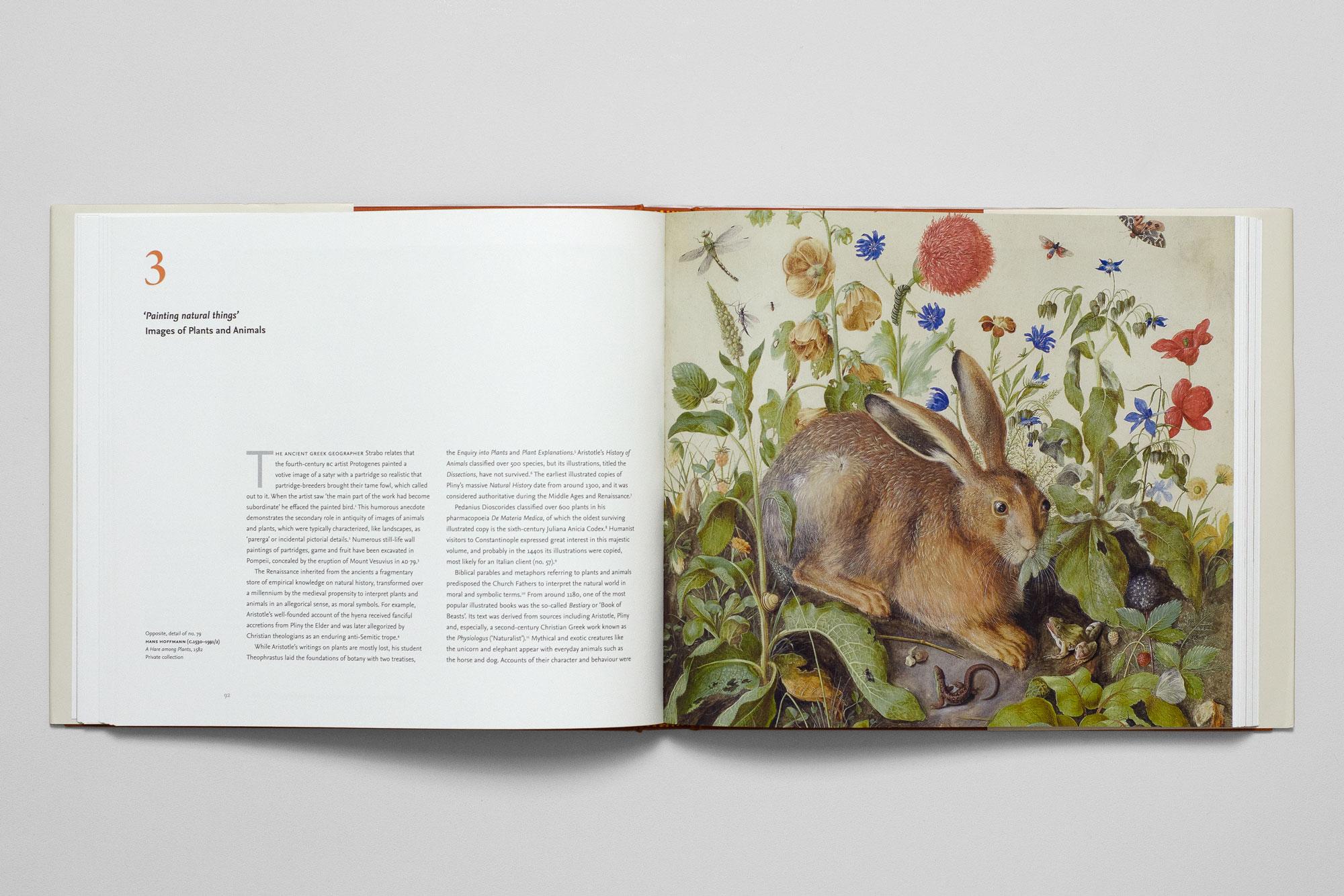 Renaissance Watercolours: From Durer to Van Dyke